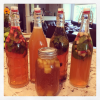 Homebrewed Kombucha | Why I am SO Addicted!