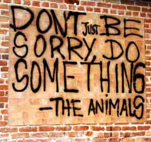 Stop-Animal-Cruelty-Dont-Be-Sorry-Do-Something.jpg