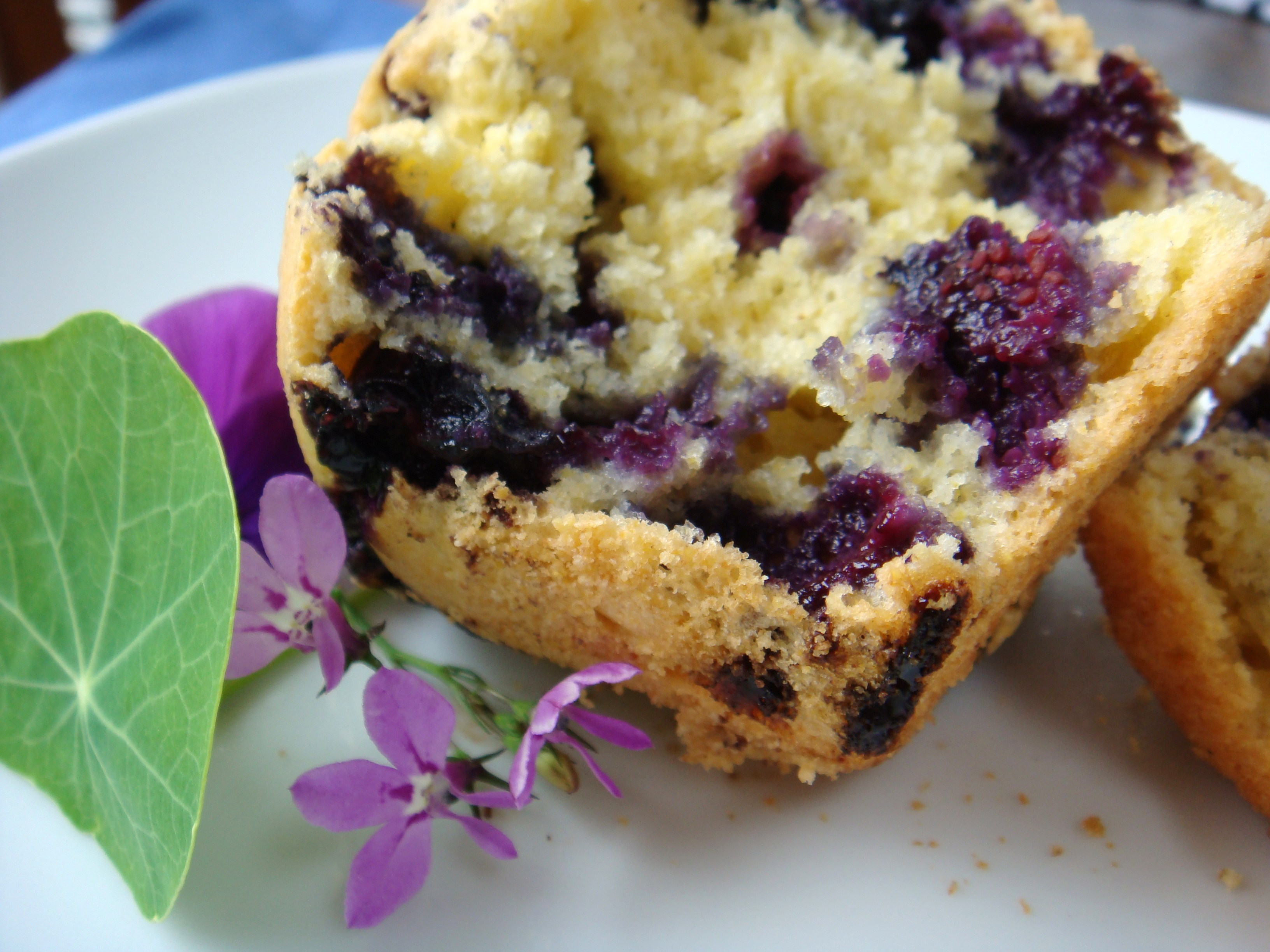 Sweet Blueberry Corn Muffins Recipes — Dishmaps