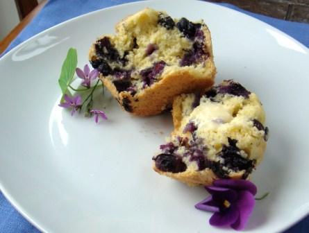 muffins_web